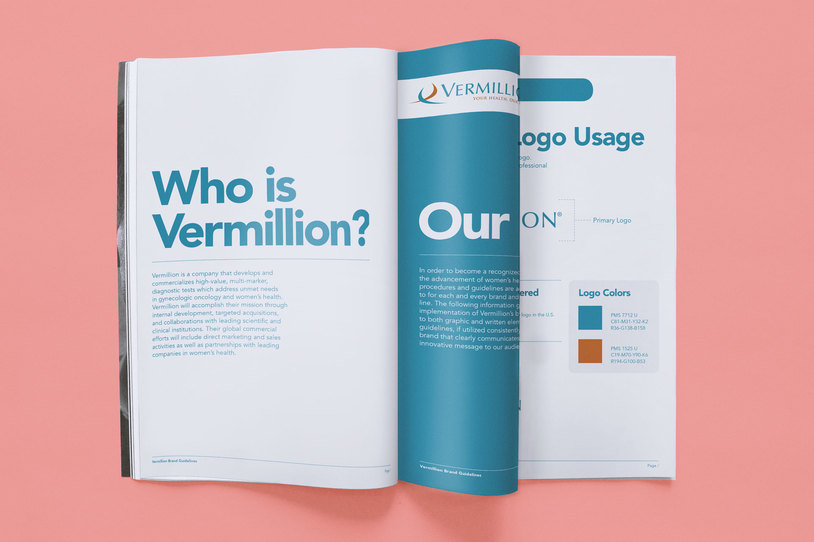 Carousel vermillion brand guide 2